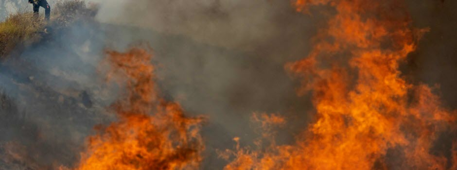 Incendies : alerte sur la planète